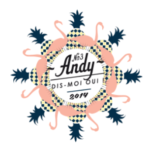 andy festival
